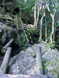 skeleton_gorge-12