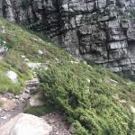 Hike up Platteklip Gorge Cape Town