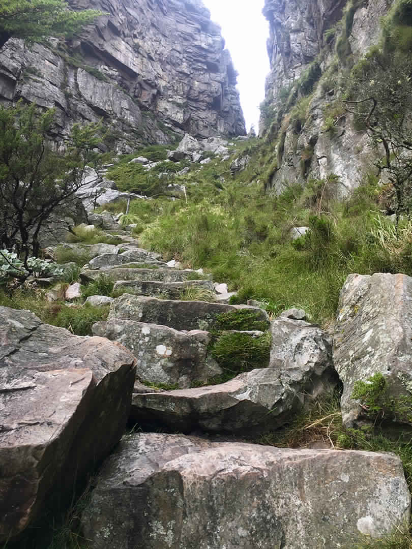 Platteklip Gorge Table Mountain Hike In Cape Town South