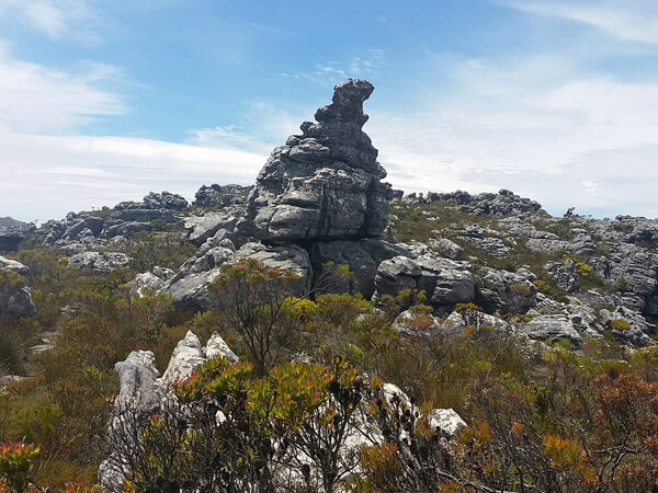 Rock formations on Table Mountain
