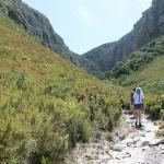 Botanical gardens tours South Africa