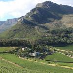 Cape Town wine tours and tatsings