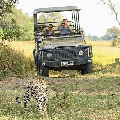 Safari-Thumbnail-home