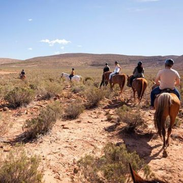 Safari horseback Cape Town