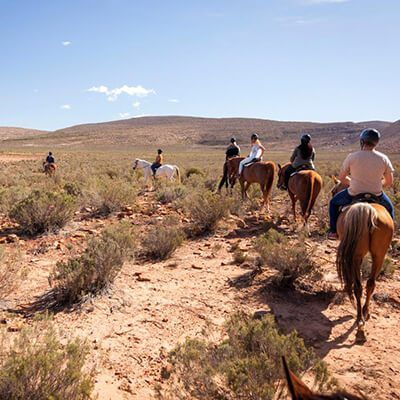 Safari horseback Cape Town