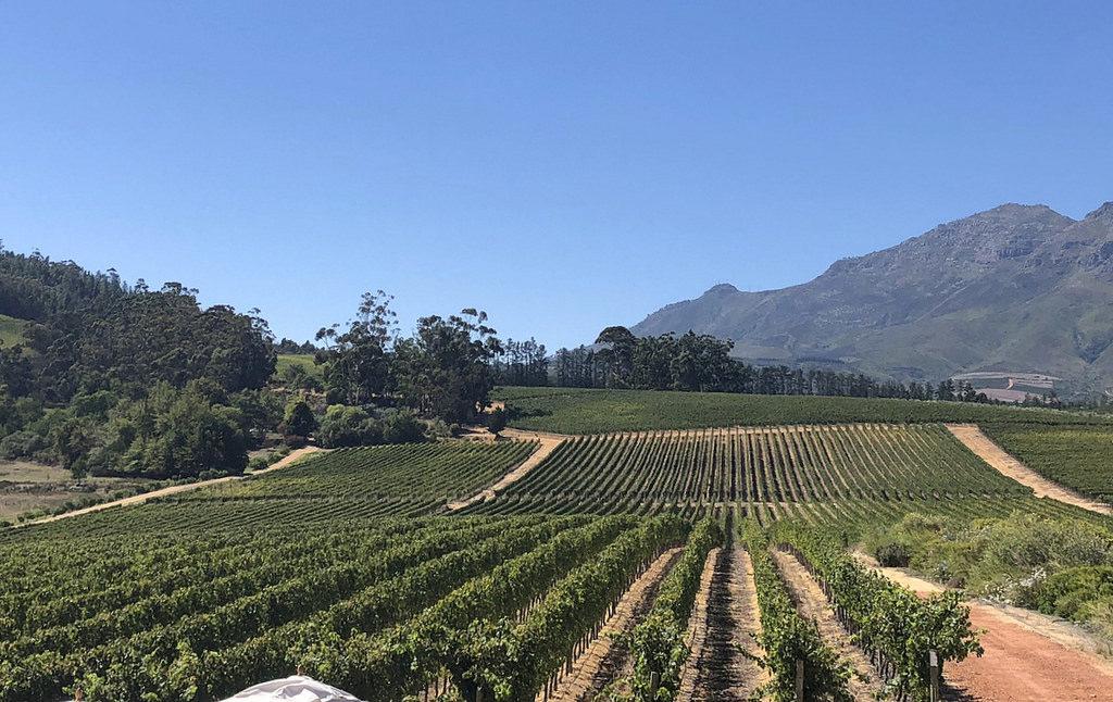 Stellenbosch Cape Town