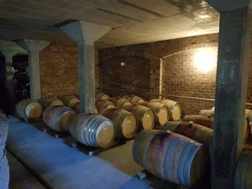 Wine cellar tour south africa