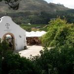 Wine tours cape town half day