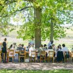 Wine tours in the Western Cape