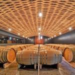 cellar room wine tasting tour