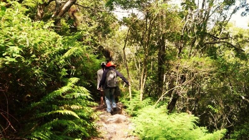 Table mountain hike Skeleton Gorge
