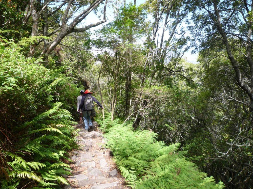 Table Mountain time