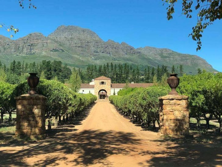 Cape Town Wine-tours