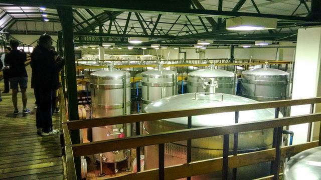 Constantia cellar tour