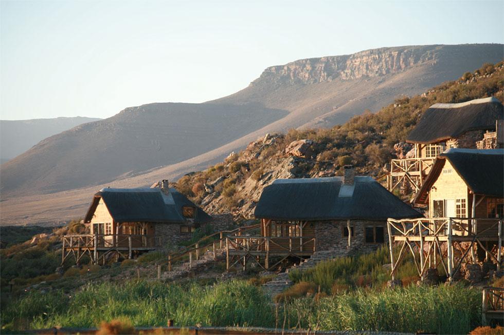 Safari jclose to Cape Town