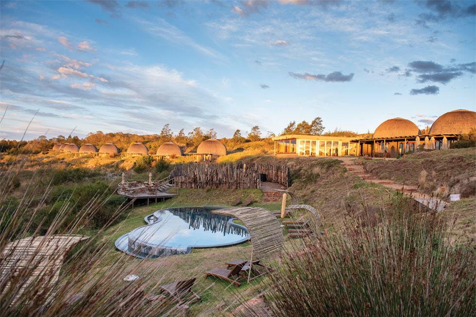 Cape Town Safari to Gondwana