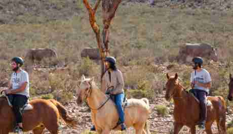 Horseback Safari Cape Town