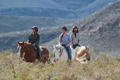Horseback safari close to Cape Town