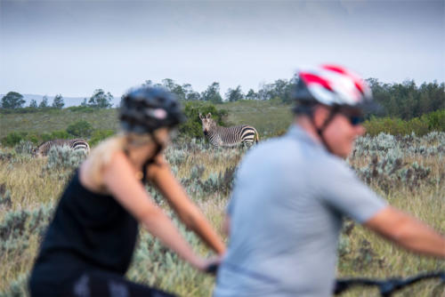 Mountain biking at Gondwana