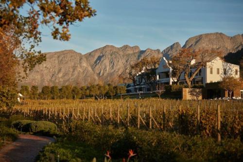 All seasons wine tours