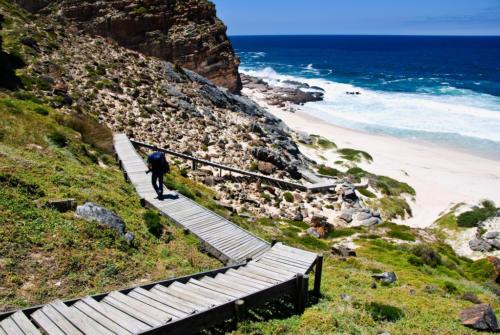 Cape Point walk in Cape Town