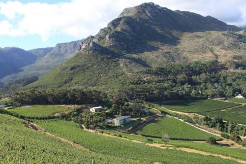 Cape Town wine tours and tatsings