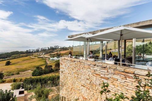 Cape town best wine tatsing rooms