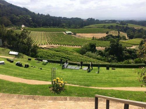 Costantia wine tour