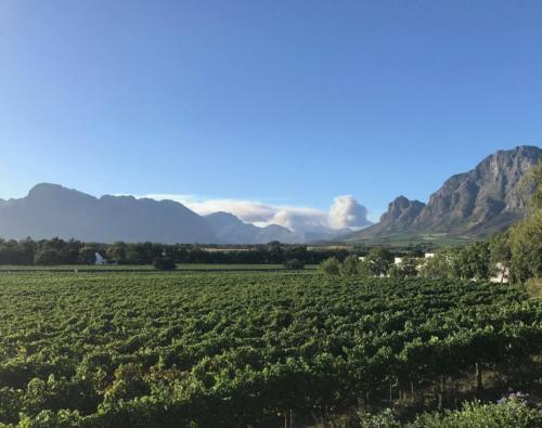 Franschhoek wine tours in Cape Town