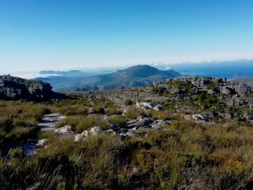 Hiking Table Mountain Kirstenbosch Gardens