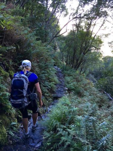 Hiking into Kirstenbosh Gardens