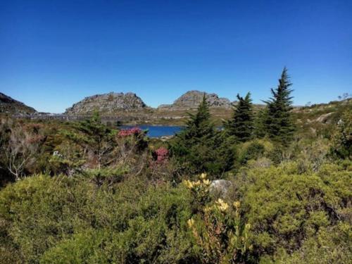 Hiking over Table Mountain to botanical garden