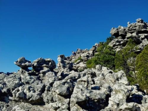 Secret hike on top of Table Mountain