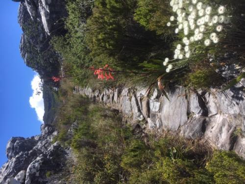 Secret walk Table Mountain