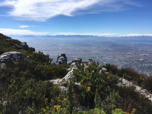 View from Skeleton Gorge