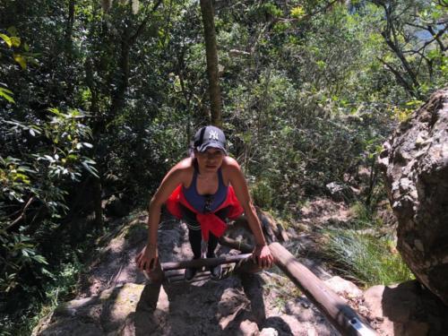 Hiking at Kirstenbosch Gardens Cape Town