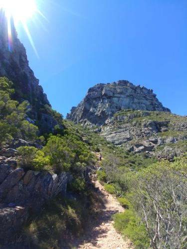 Table Mountain secret hikes