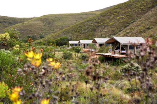 Chalets at Gondwana Game Reserve
