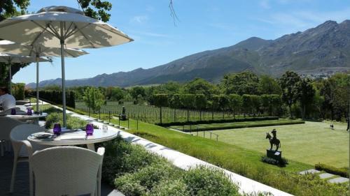 Top estate wine tour Cape Town