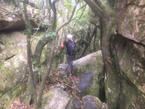 Tranquillity Cracks Secret Table Mountain hike