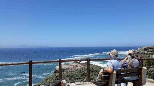 Whale watching tours from the coast