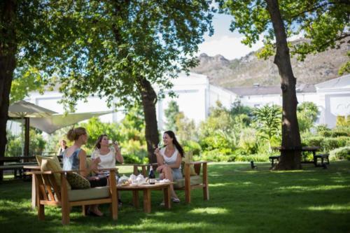 Wine tasting on wine tours
